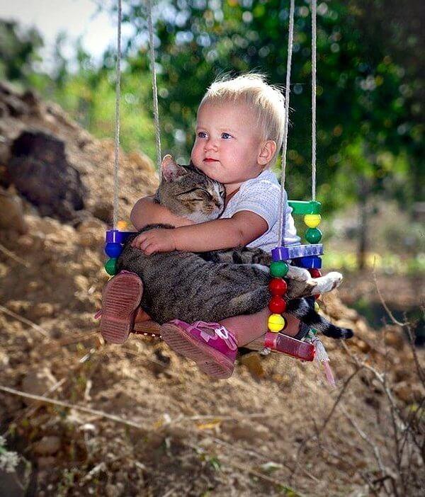 не си изхвърляйте котката