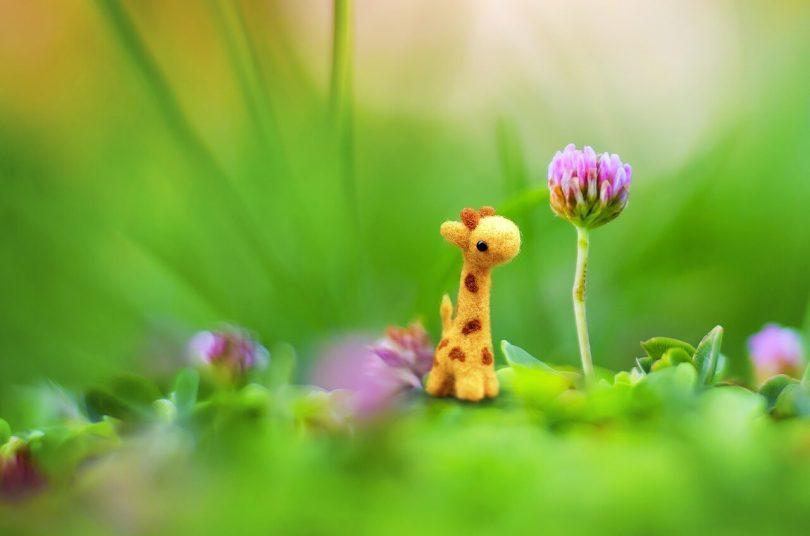 Приказка за жирафчето Димитърчо