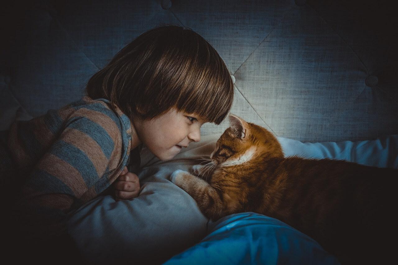 животните с децата