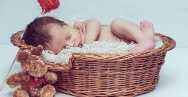 Демографската стратегия и факти, сурогатни майки, други