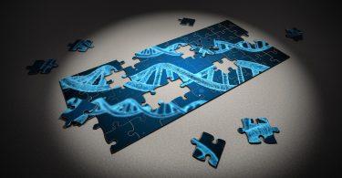 Проф. Иво Кременски: Tрябва да има строг контрол върху генетичните изследвания